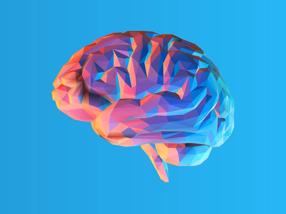 Phospholipids to The Brain